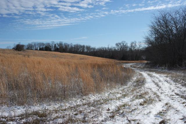Tbd Girlstown Road, Graff, MO 65660 (MLS #60127689) :: Team Real Estate - Springfield