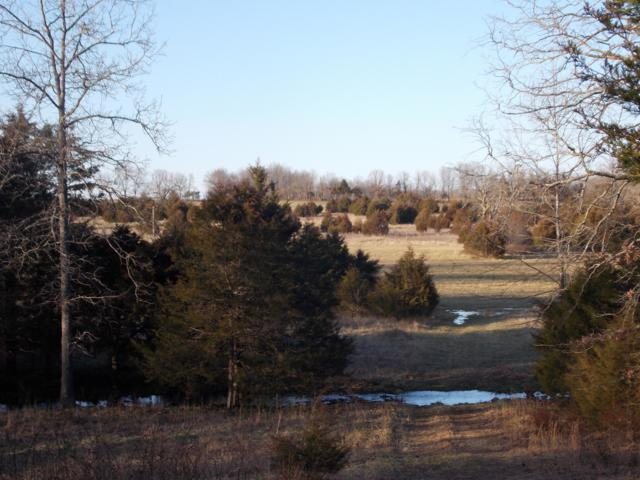 Tbd County Road 7520, West Plains, MO 65775 (MLS #60128680) :: Weichert, REALTORS - Good Life