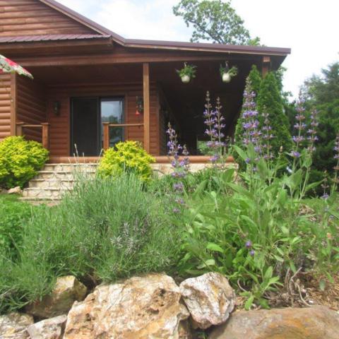 23494 Farm Road 2035, Crane, MO 65633 (MLS #60130295) :: Team Real Estate - Springfield