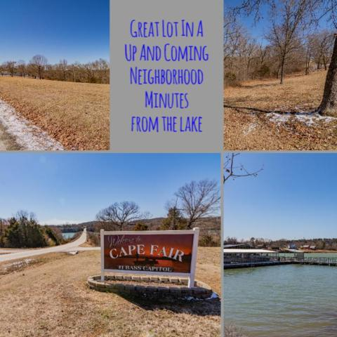 Lot 16 Mule Barn Drive, Cape Fair, MO 65624 (MLS #60130799) :: Team Real Estate - Springfield