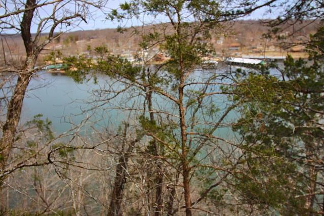 Lot 60 Peaceful Drive, Branson, MO 65616 (MLS #60131127) :: Sue Carter Real Estate Group