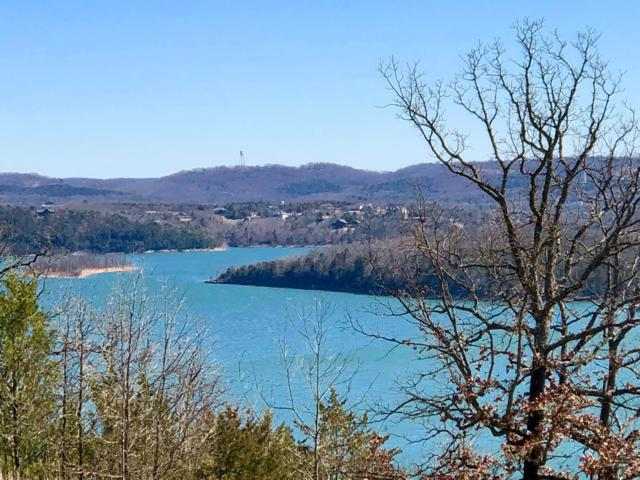 7396 State Hwy Y Lot 8, Galena, MO 65656 (MLS #60131420) :: Massengale Group