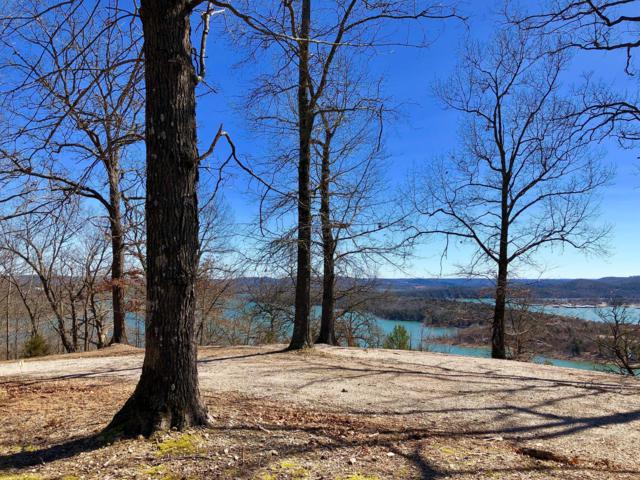 7396 State Hwy Y Lot 10, Galena, MO 65656 (MLS #60131424) :: Massengale Group