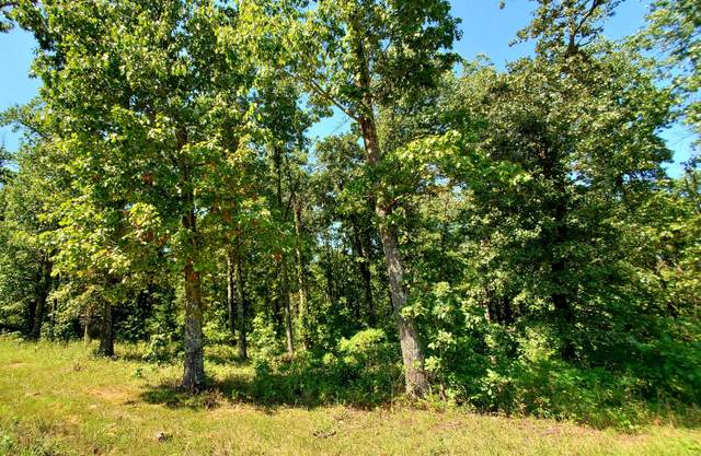 Tbd Private Road 8948, West Plains, MO 65775 (MLS #60131710) :: Evan's Group LLC