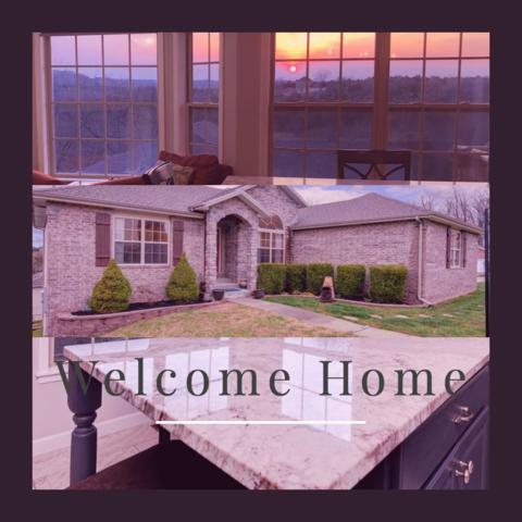 311 Round Hill Road, Branson, MO 65616 (MLS #60132931) :: Team Real Estate - Springfield