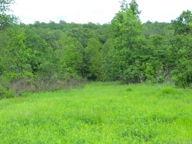 Tbd V Highway, Thayer, MO 65791 (MLS #60136858) :: Sue Carter Real Estate Group