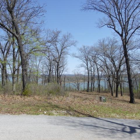 65 Green Cypress Lane, Shell Knob, MO 65747 (MLS #60137139) :: Weichert, REALTORS - Good Life