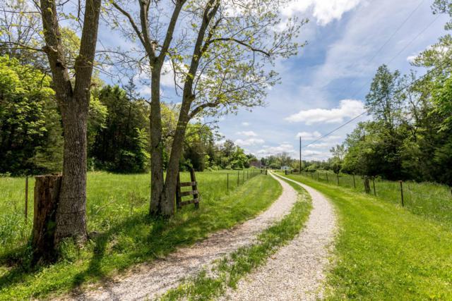 490 Silver Shade Lane, Fordland, MO 65652 (MLS #60137237) :: Team Real Estate - Springfield
