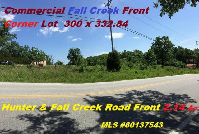 4633 Fall Creek Drive, Branson, MO 65616 (MLS #60137543) :: Team Real Estate - Springfield