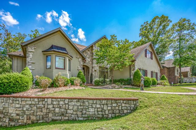 115 Briarcliff Road, Branson, MO 65616 (MLS #60137690) :: Sue Carter Real Estate Group