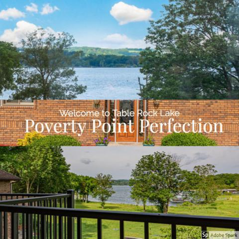 204 Potential Drive, Hollister, MO 65672 (MLS #60138181) :: Sue Carter Real Estate Group