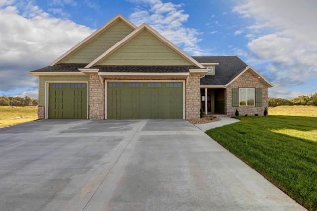 516 N Dublin, Nixa, MO 65714 (MLS #60138238) :: Sue Carter Real Estate Group
