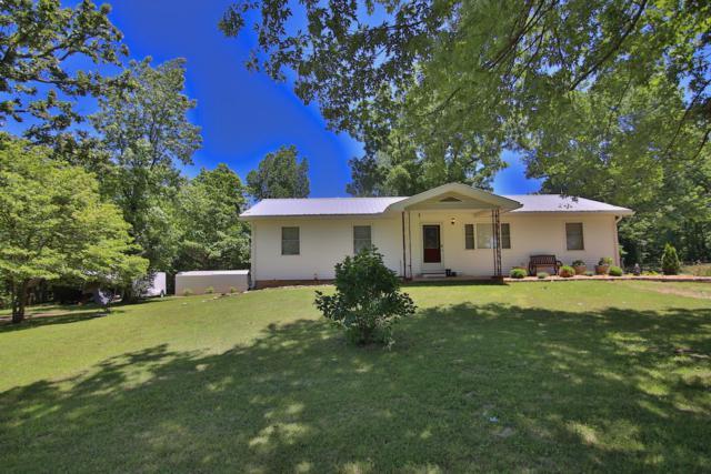 10 E County Road 210, Alton, MO 65606 (MLS #60139020) :: Sue Carter Real Estate Group
