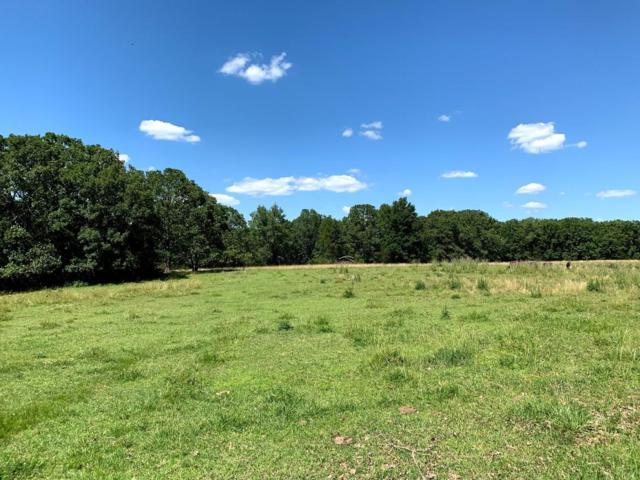 Tbd Brown Cemetery Road, Kissee Mills, MO 65680 (MLS #60139304) :: Weichert, REALTORS - Good Life