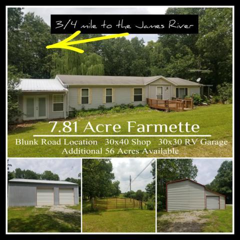 457 Blunk Road, Galena, MO 65656 (MLS #60139569) :: Team Real Estate - Springfield