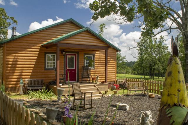 4477 County Road 304, Alton, MO 65606 (MLS #60140114) :: Sue Carter Real Estate Group