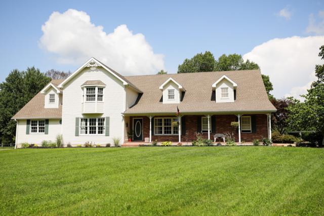 29 Grandview Lane, Buffalo, MO 65622 (MLS #60141900) :: Weichert, REALTORS - Good Life