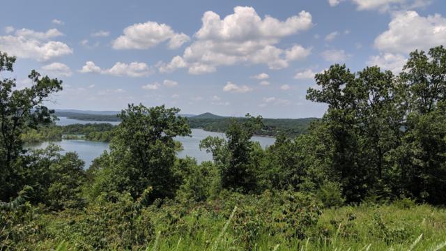 9 Cedar Bend, Shell Knob, MO 65747 (MLS #60141987) :: Sue Carter Real Estate Group