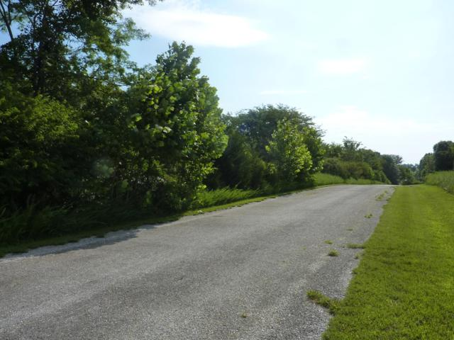 Tbd Country Meadow Road, Highlandville, MO 65669 (MLS #60142281) :: Massengale Group