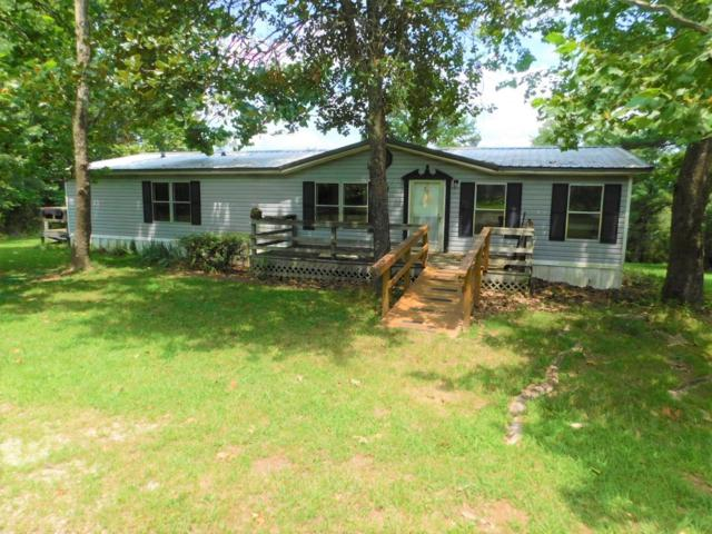 9175 County Road 3940, Mountain View, MO 65548 (MLS #60143439) :: Sue Carter Real Estate Group
