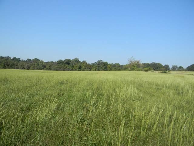 6100 Blk S Farm Road 241, Rogersville, MO 65742 (MLS #60147545) :: Sue Carter Real Estate Group