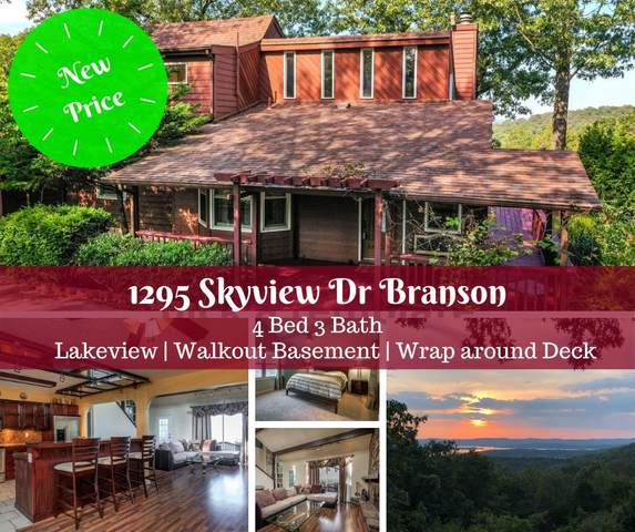 1295 Skyview Drive, Branson, MO 65616 (MLS #60147621) :: The Real Estate Riders