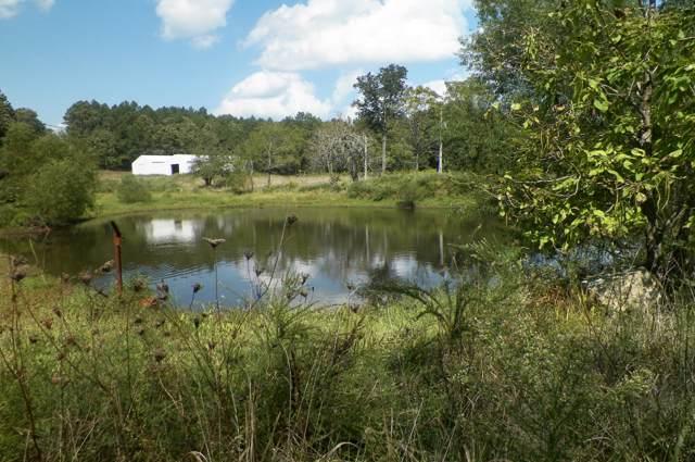 2370 County Road 446, Winona, MO 65588 (MLS #60147696) :: Sue Carter Real Estate Group