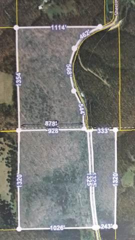 000 Sherrow Road, Fordland, MO 65652 (MLS #60148040) :: Sue Carter Real Estate Group