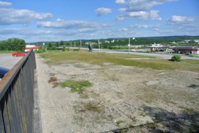 201 Blue Sky Lane, Hollister, MO 65672 (MLS #60148439) :: Team Real Estate - Springfield