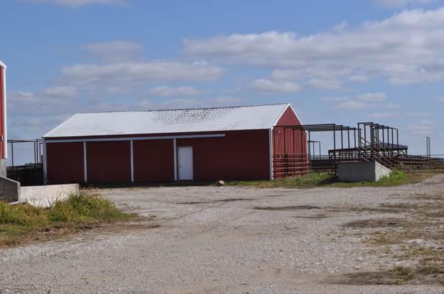 Tbd S 110th Road, Flemington, MO 65650 (MLS #60148887) :: Sue Carter Real Estate Group