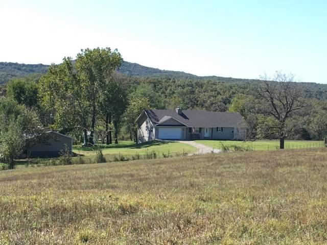 300 Maize Road Road, Bradleyville, MO 65614 (MLS #60149464) :: Sue Carter Real Estate Group