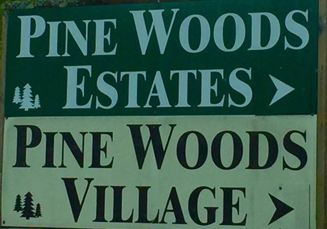 000 Pine Woods Village Drive Lot 29, Hollister, MO 65672 (MLS #60149704) :: Massengale Group