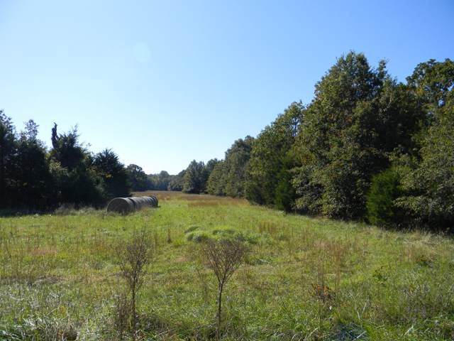 Lot 3 E Farm Rd 94, Strafford, MO 65757 (MLS #60149765) :: Team Real Estate - Springfield