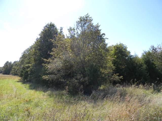 Lot 1 E Farm Rd 94, Strafford, MO 65757 (MLS #60149856) :: Team Real Estate - Springfield