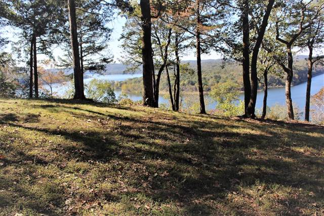 301 Monticello Road, Galena, MO 65656 (MLS #60150679) :: Team Real Estate - Springfield