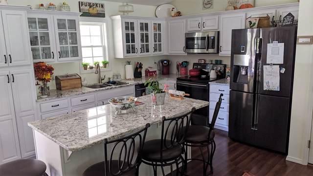 221 N Catamount Blvd., Reeds Spring, MO 65737 (MLS #60151893) :: Sue Carter Real Estate Group