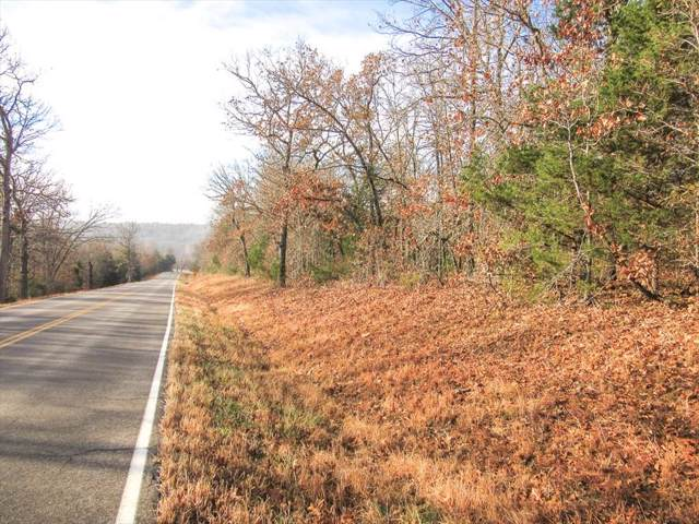 Tbd1 State Hwy 95, Thornfield, MO 65762 (MLS #60152094) :: Sue Carter Real Estate Group