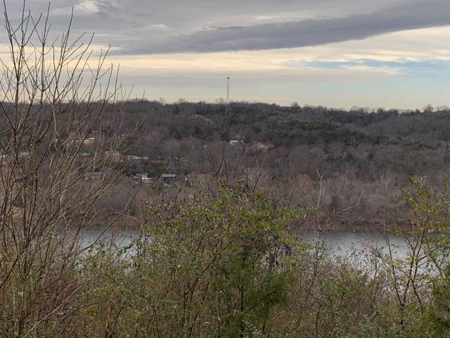 000 Lookout Road, Powersite, MO 65731 (MLS #60152482) :: Sue Carter Real Estate Group