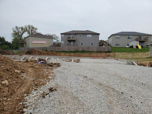 200 Bald Cypress Court, Hollister, MO 65672 (MLS #60152850) :: Team Real Estate - Springfield