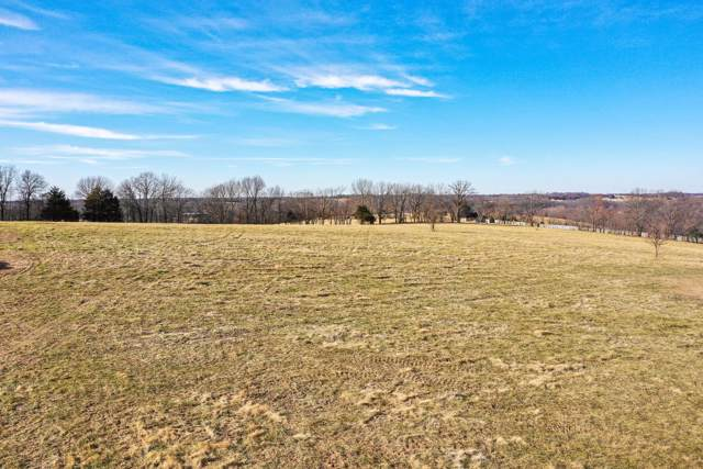Lot 6 Lookback Drive, Ozark, MO 65721 (MLS #60153054) :: Sue Carter Real Estate Group