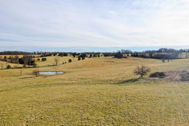 Lot 8 Lookback Drive, Ozark, MO 65721 (MLS #60153056) :: Sue Carter Real Estate Group