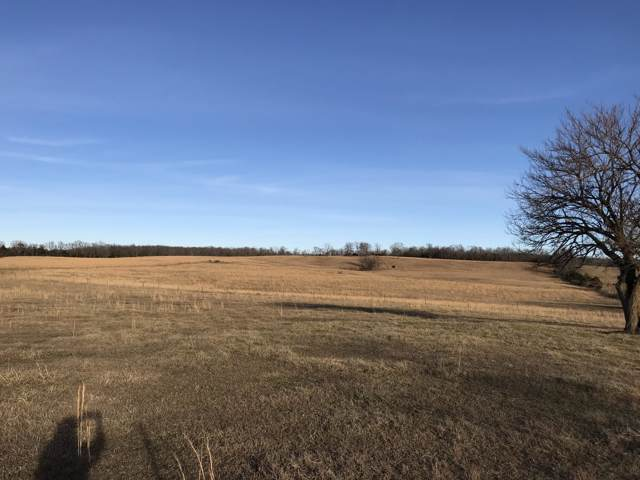 14502 Crow Road, Licking, MO 65542 (MLS #60153857) :: Sue Carter Real Estate Group