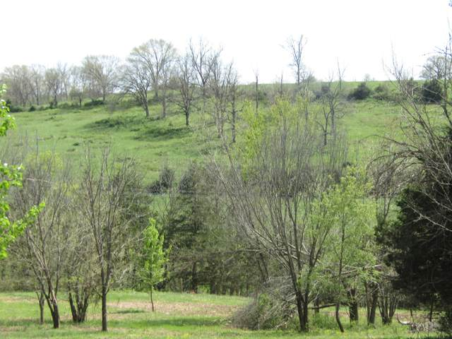 000 W County Road 504 W, Ava, MO 65608 (MLS #60153960) :: Clay & Clay Real Estate Team