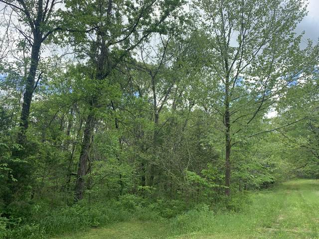 000 Dade County Rd 68, Greenfield, MO 65661 (MLS #60154625) :: The Real Estate Riders