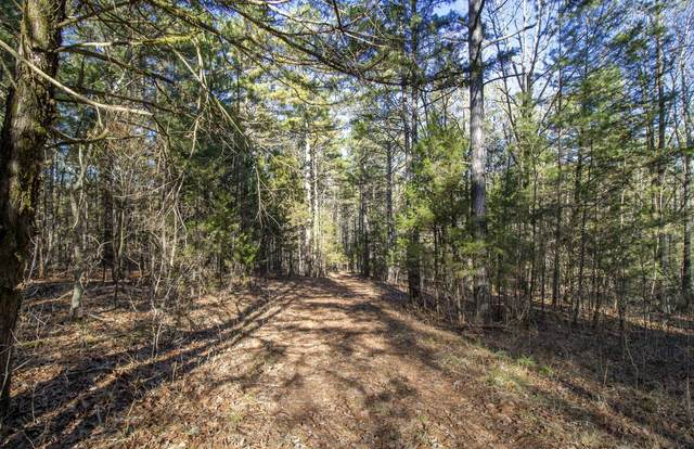 000 Equine Trail Lot 23, Eminence, MO 65466 (MLS #60155198) :: Clay & Clay Real Estate Team