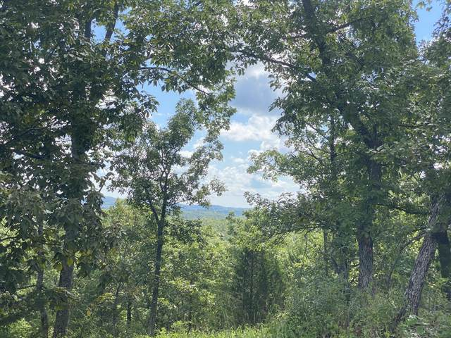 Lot 112 Black Forest Lane, Branson West, MO 65737 (MLS #60155425) :: United Country Real Estate