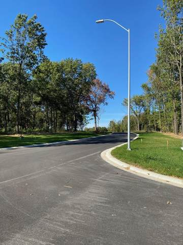 Lot 38 The Estates Of Enniskerry, Nixa, MO 65714 (MLS #60155945) :: Evan's Group LLC