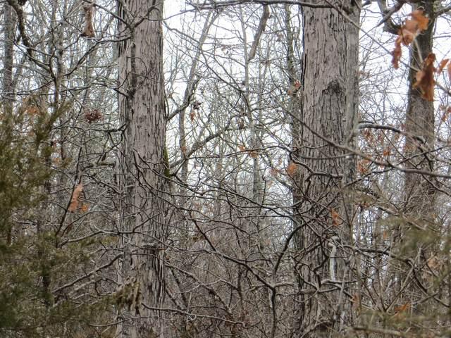 000 Ridge Haven, Mammoth Spring, AR 72554 (MLS #60156780) :: Winans - Lee Team | Keller Williams Tri-Lakes