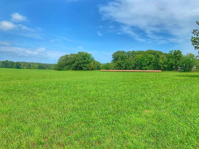 000 S 80th Road, Bolivar, MO 65613 (MLS #60157225) :: Team Real Estate - Springfield