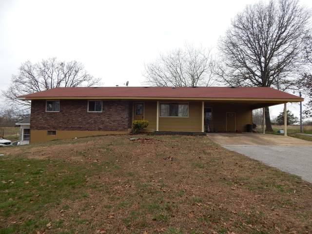 8659 State Route Ad, Dora, MO 65637 (MLS #60157250) :: Team Real Estate - Springfield